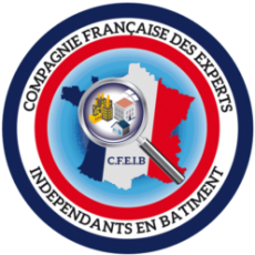 Logo CFEIB